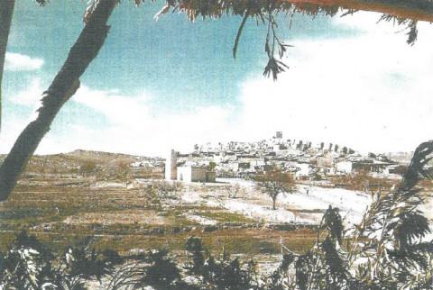 Conférence ALFA : la Guerre d'Algérie